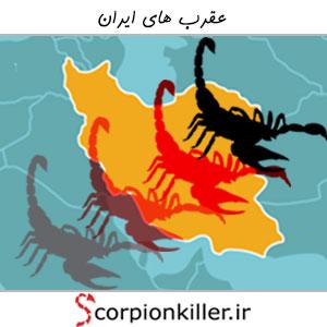 عقرب های ایران